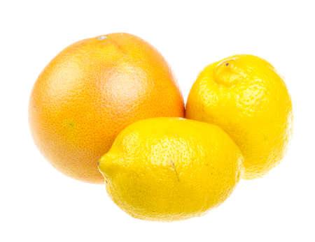 Fruits citrus photo