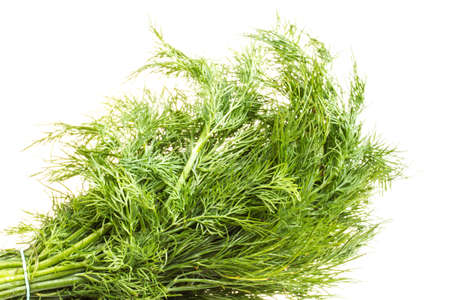 Fresh branches of green dill isolated on white background. Stock Photo - 16631724