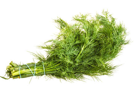Fresh branches of green dill isolated on white background. Stock Photo - 16626871