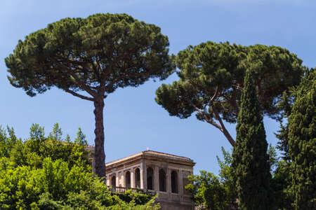 Roman ruins in Rome, Forum Stock Photo - 16804632