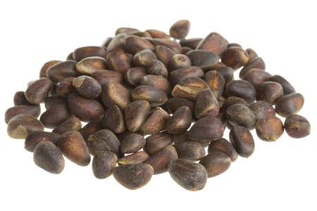 cedar nuts Stock Photo - 17279288