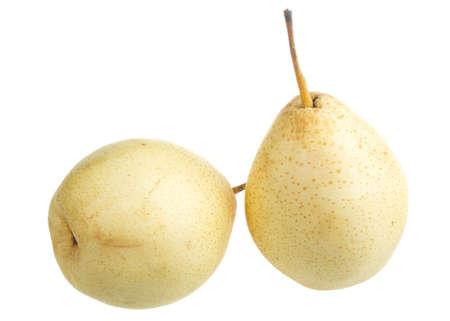 fresh nashi pear on a white background Stock Photo - 17279383