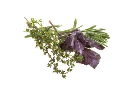 Herbs - rosemary, thyme, basil Stock Photo - 17489448