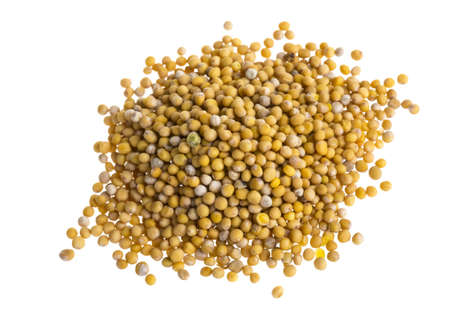 yellow mustard seeds photo