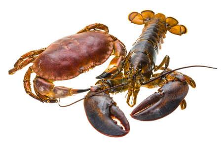 raw lobster: Langosta y Cangrejo Raw Foto de archivo