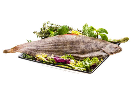 dover: Fish Dover sole Stock Photo