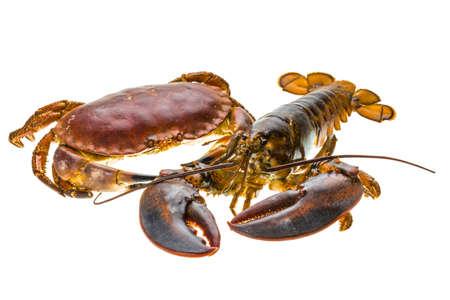 raw lobster: Langosta cruda y cangrejo Foto de archivo