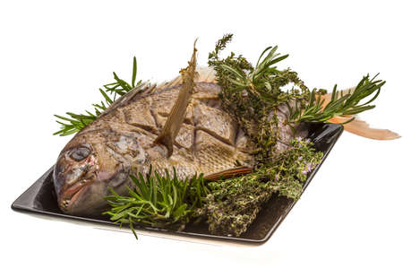 Grilled sea perch photo