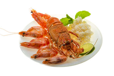 Spiny lobster, shrimps and rice Stock Photo - 19393940