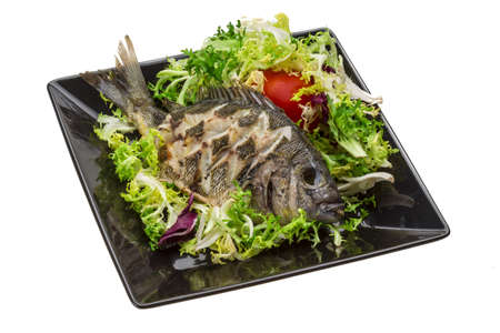 tilapia: Grilled Tilapia with salad