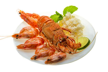 Spiny lobster, shrimps and rice Stock Photo - 19485429