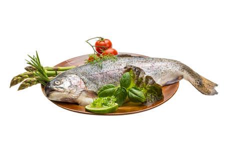 Fresh raw rainbow trout Stock Photo - 19554489