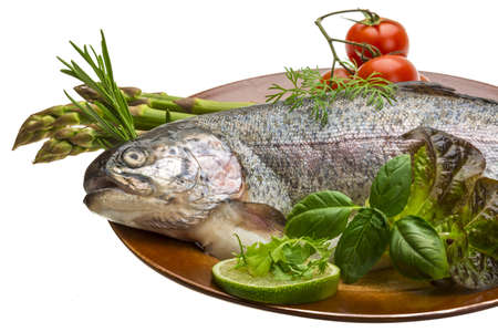 Fresh raw rainbow trout Stock Photo - 19554725