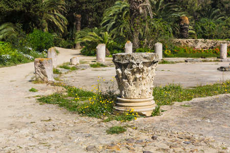 Old Carthage ruins in Tunisia photo