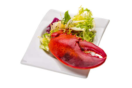 Lobster leg with salad photo