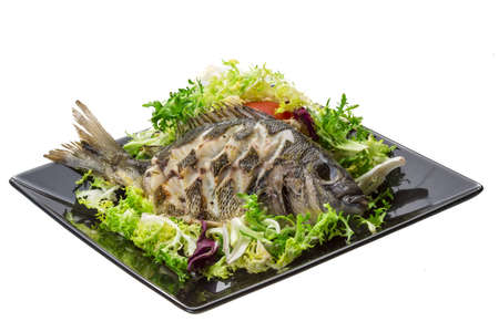 Grilled Tilapia with salad Stock Photo - 19565651