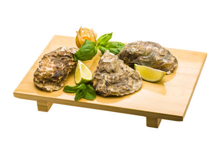 Fresh oyster Stock Photo - 19565599