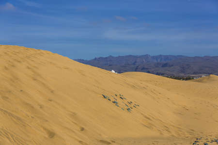 Maspalomas Duna - Desert in Canary island Gran Canaria photo