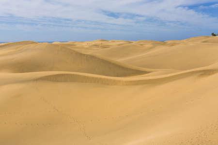 Maspalomas Duna - Desert in Canary island Gran Canaria photo