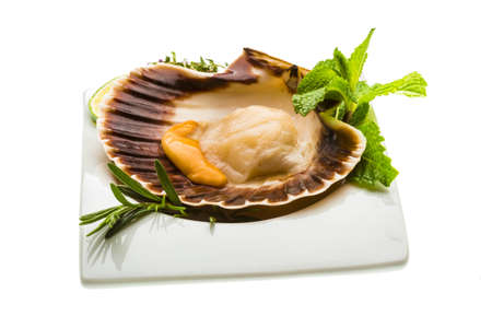 Scallop with asparagus, lime, mint and rosemary photo