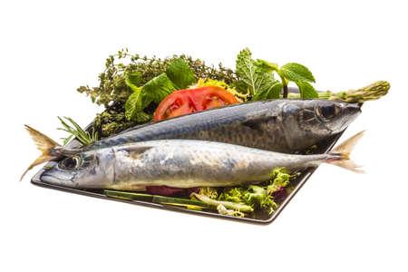Atlantic raw sardine Stock Photo - 19627386