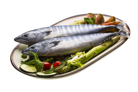 Fresh Atlantic mackerel Stock Photo - 19626217