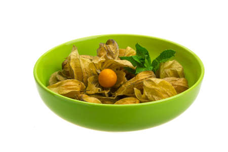 Physalis photo