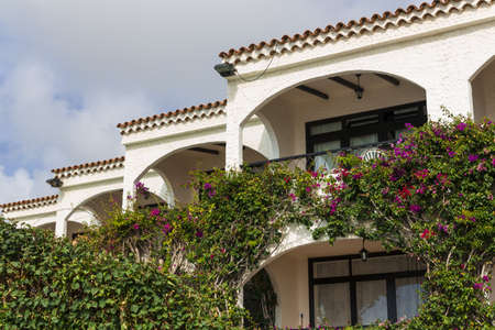 Maspalomas architecture - villas and gardens photo