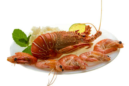 Spiny lobster, shrimps and rice Stock Photo - 20103059