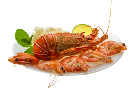 Spiny lobster, shrimps and rice Stock Photo - 20278658