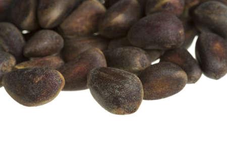 rosin: cedar nuts