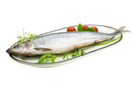 Marinated herring with herbs photo