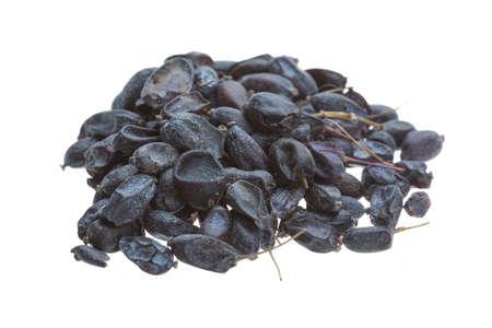 lycii: Dried barberries