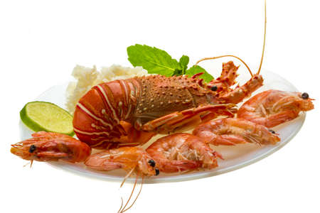 Spiny lobster, shrimps and rice Stock Photo - 20634772