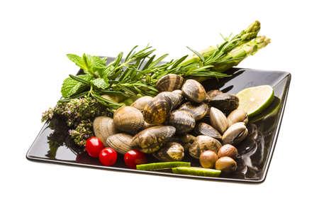 almejas: Spanish mollusc - Almeja Stock Photo