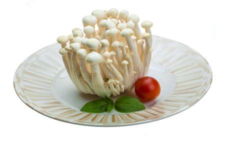 Japan mushroom Shimeji photo