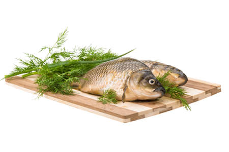 Raw Crucian on the plate with dill Stock Photo - 21228135