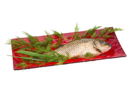 Raw Crucian on the plate with dill Stock Photo - 21228133
