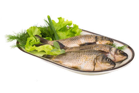 Raw Crucian on the plate with dill Stock Photo - 21262634