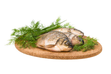 Raw Crucian on the plate with dill Stock Photo - 21350631