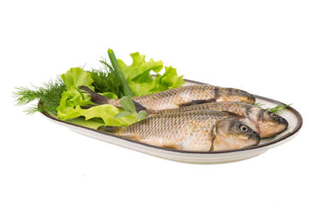 Raw Crucian on the plate with dill Stock Photo - 21439336