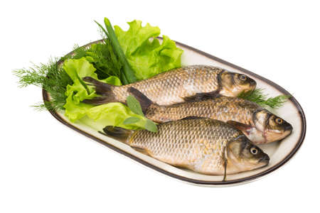 Raw Crucian on the plate with dill Stock Photo - 22023713