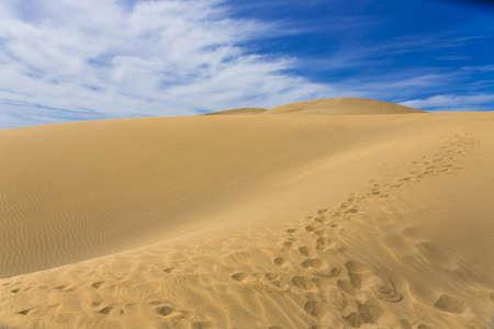 desert island: Maspalomas Duna - Desert in Canary island Gran Canaria Stock Photo