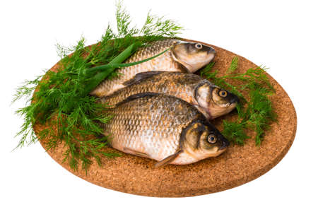 Raw Crucian on the plate with dill Stock Photo - 22422005