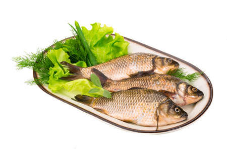Raw Crucian on the plate with dill Stock Photo - 22422006