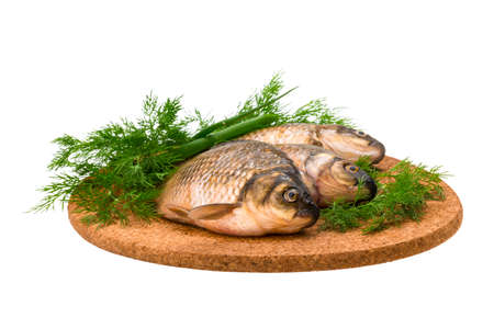 Raw Crucian on the plate with dill Stock Photo - 22803889