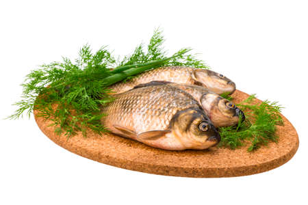 Raw Crucian on the plate with dill Stock Photo - 22940265