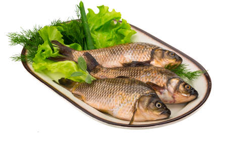 Raw Crucian on the plate with dill Stock Photo - 22940267