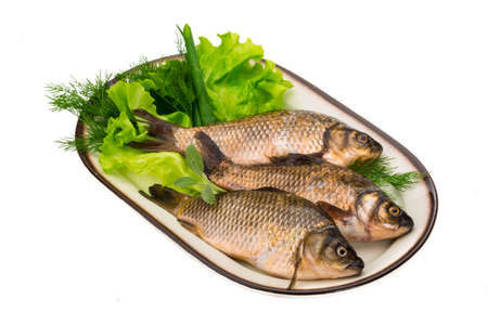 Raw Crucian on the plate with dill Stock Photo - 23193766
