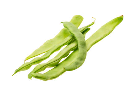 Green bean Stock Photo - 23225737